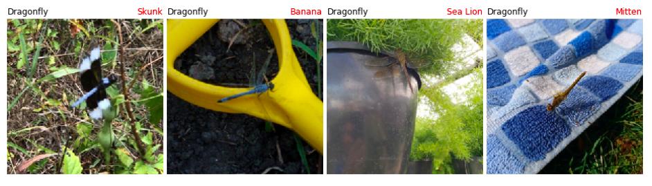 Identificação de insetos